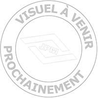 Serrure Vega Verticale à mentonnet - pour grille